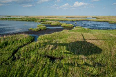 Photo: Helicopter shadow over oiled marsh near Port Sulphur, Louisiana.