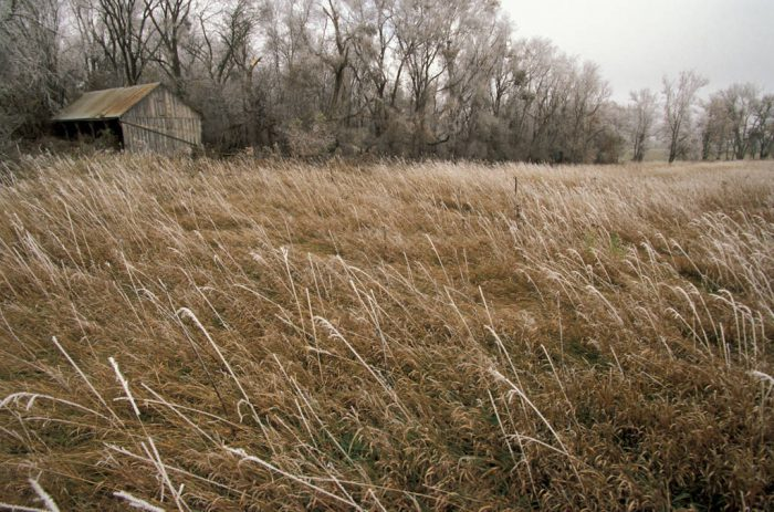 Photo: Winter scene from historic Waveland Farm near Bennett, Nebraska.