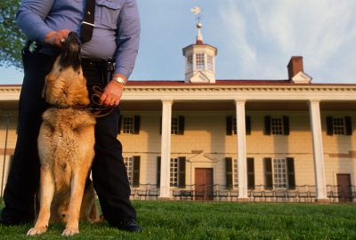 Photo: A security guard and his dog at Mount Vernon in Washington, DC.