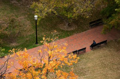 Photo: A view of a park in Washington, District of Columbia.