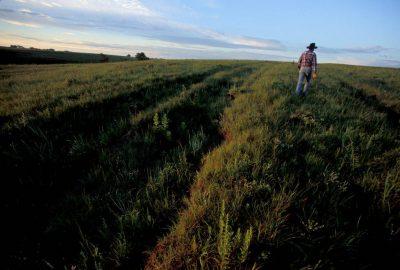Photo: Ruts from the Santa Fe Trail cut through a Kansas Prairie.