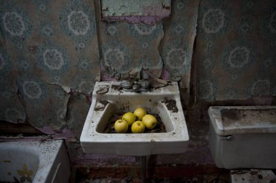 Photo: Apples in an abandoned farmhouse sink.