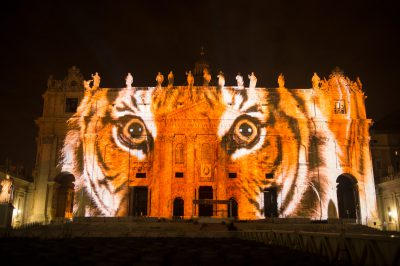 Photo: A Sumatran tiger is projected onto the Vatican in an effort to raise awareness for the extinction crisis.