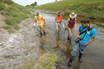 Photo: An insect crew searches for the endangered Salt Creek tiger beetle along Little Salt Creek.
