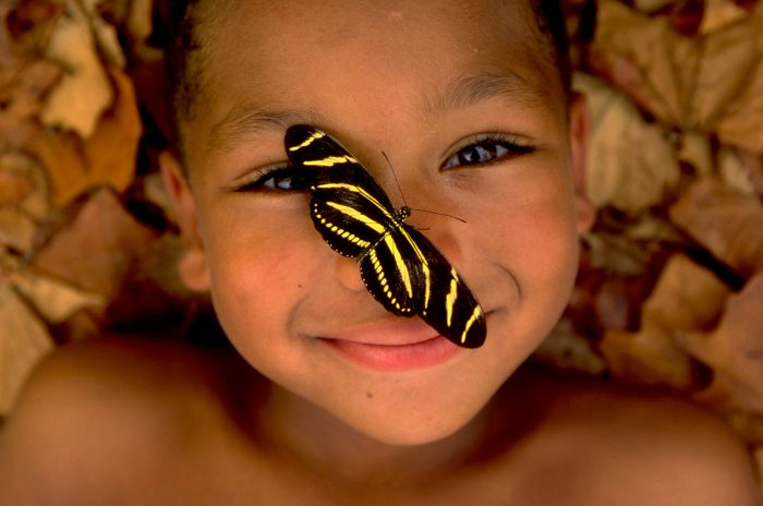 Photo: A young boy spends quality time with the insect world at the Lincoln Children's Zoo Butterfly Pavilion in Lincoln, NE.