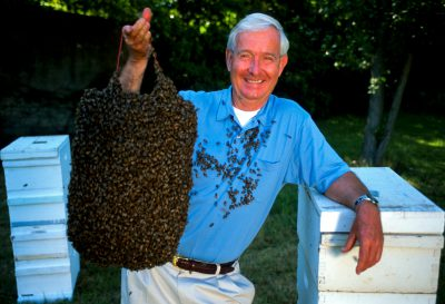Photo: Dr. Norman Gary, an entomologist and bee wrangler, holds up some of his bees.