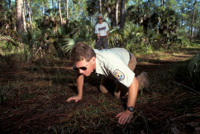 Photo: Larry Richardson helps out with a camera trap to photograph endangered Florida panthers at Florida Panther NWR (RefugesShoot).