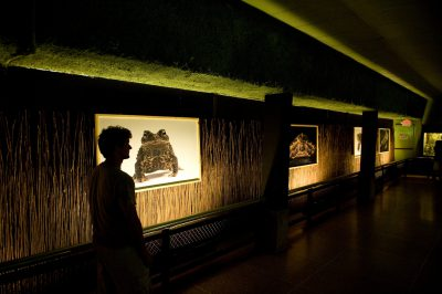 Photo: Joel Sartore's turtle/tortoise photographs on display at Zoo Atlanta.