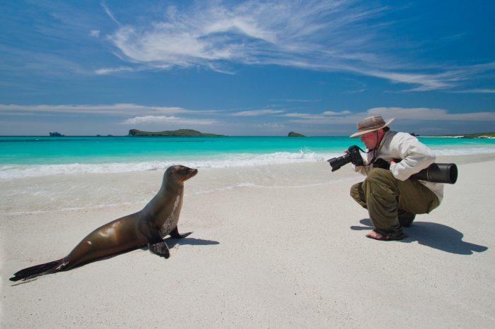 Photo: Joel Sartore photographs a Galapagos sea lion (Zalophus wollebaeki) while on assignment on Espanola Island in the Galapagos.
