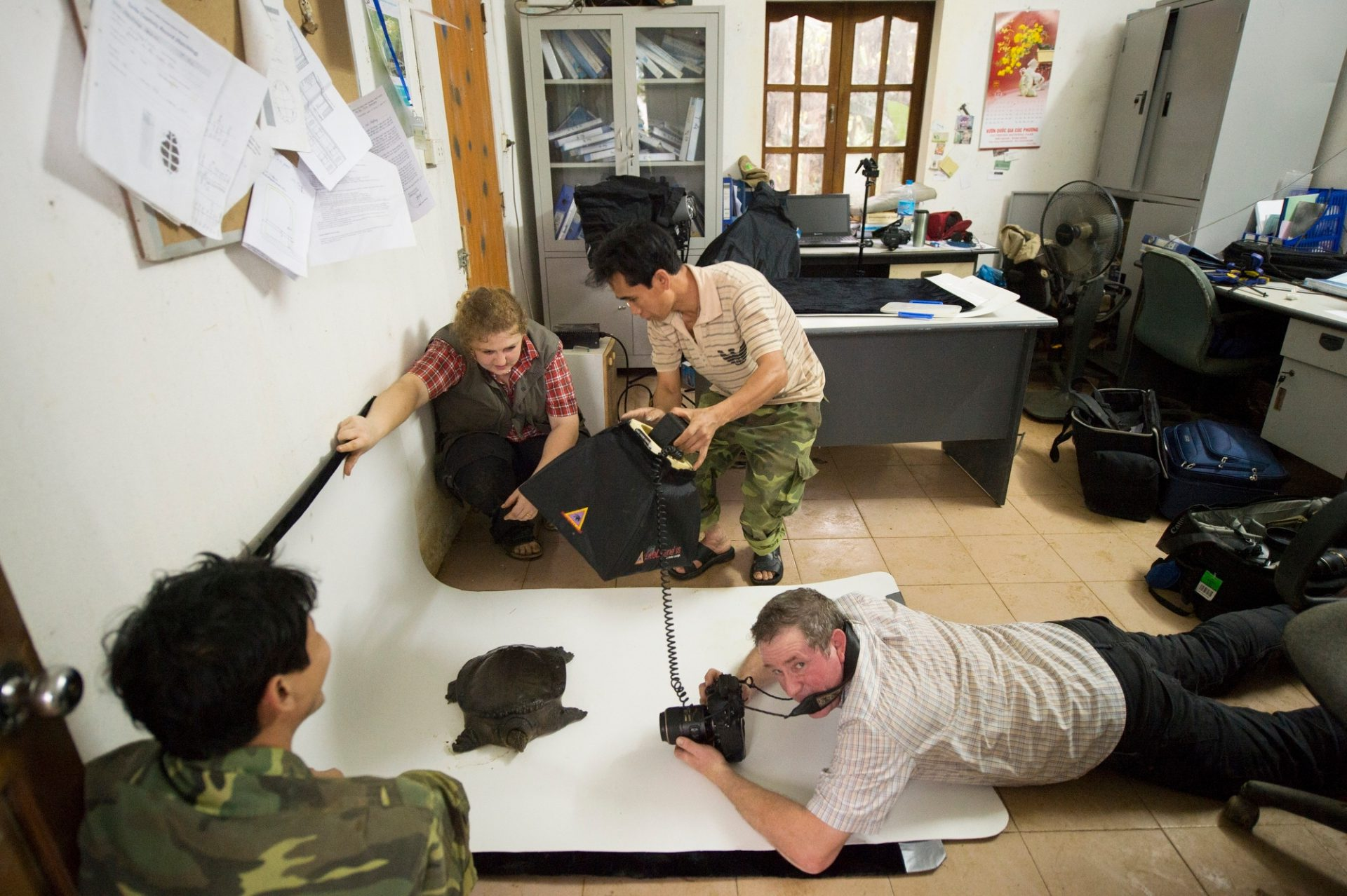 Joel Sartore photographs a vulnerable Southeast Asiatic softshell turtle (Amyda cartilaginea) at the Cuc Phuong Turtle Conservation Center in Vietnam.
