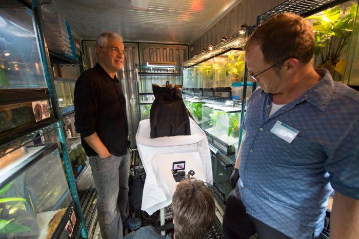 Louie Psihoyos film crew documenting an endangered horned marsupial frog (Gastrotheca cornuta) at the Atlanta Botanical Garden.
