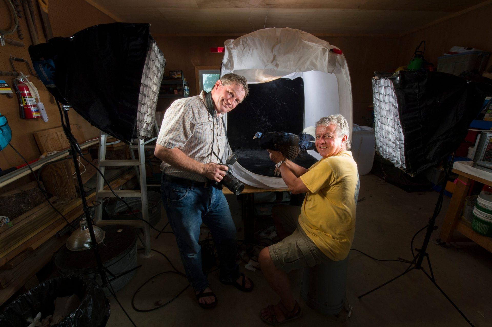 Photo: Behind the scenes during a photo shoot at Pheasant Heaven, a private pheasant breeding center near Clinton, NC.