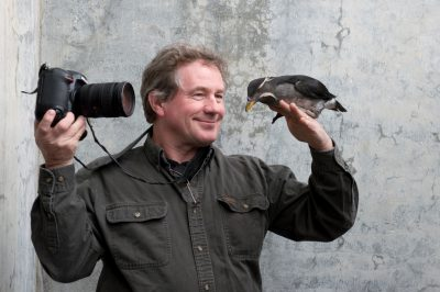 Photo: A photographer holds a rhinoceros auklet (Cerorhinca monocerata) at the Alaska SeaLife Center.