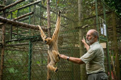 Photo: Tilo Nadler with a rare gibbon at the Endangered Primate Rescue Center in Cuc Phuong National Park, Vietnam.