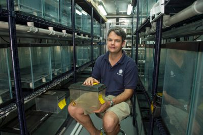 Photo: Brian Gratwicke of The Panama Amphibian Rescue and Conservation Project.