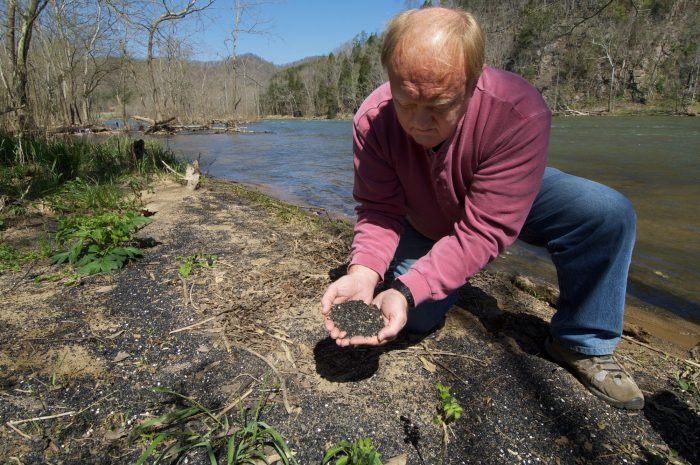 Photo: Mussel biologist Steve Ahlstedt shows off coal fines, the sediments from Virginia's coal mines that wash into the rivers of Tennessee.