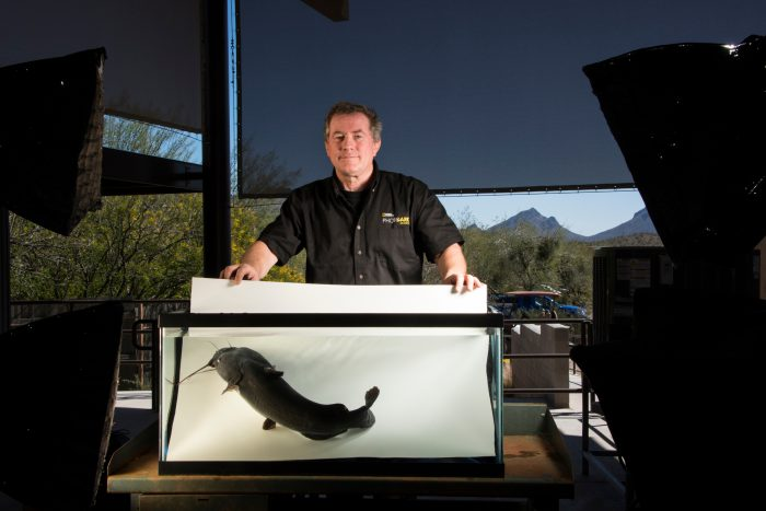 Photo: Joel Sartore photographs a Yaqui catfish (Ictalurus pricei) at the Arizona Sonora Desert Museum in Tucson, AZ.