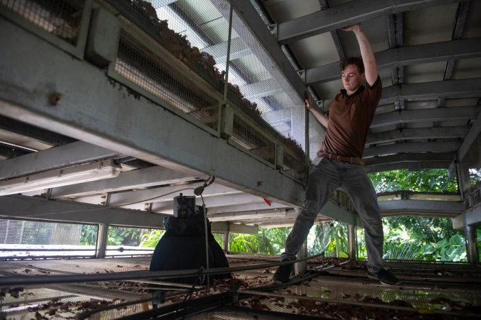 Photo: Cole Sartore rigs lights above the monkey holding area at the Singapore Zoo.