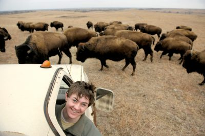 Photo: Cole Sartore with a bison herd at Maxwell State Game Preserve near Canton, KS.