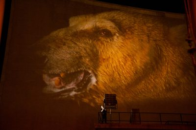Photo: From the United Nations premier of Racing Extinction, featuring Photo Ark images.