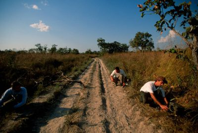 Photo: Local guides help position the components of a camera trap in Brazil's Pantanal region.