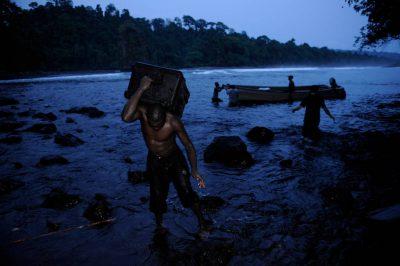 Photo: Expedition members carry equipment to shore on Bioko Island, Equatorial Guinea.