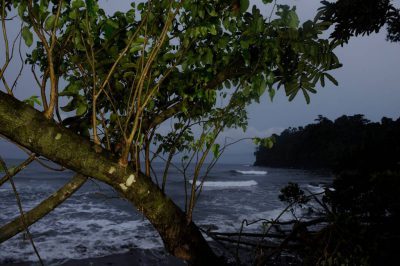 Photo: A beach scene on the coast of Bioko Island, Equatorial Guinea.