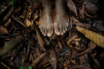Photo: The feet of an expedition guide hiking among leaf litter in the rainforest of Bioko Island, Equatorial Guinea.