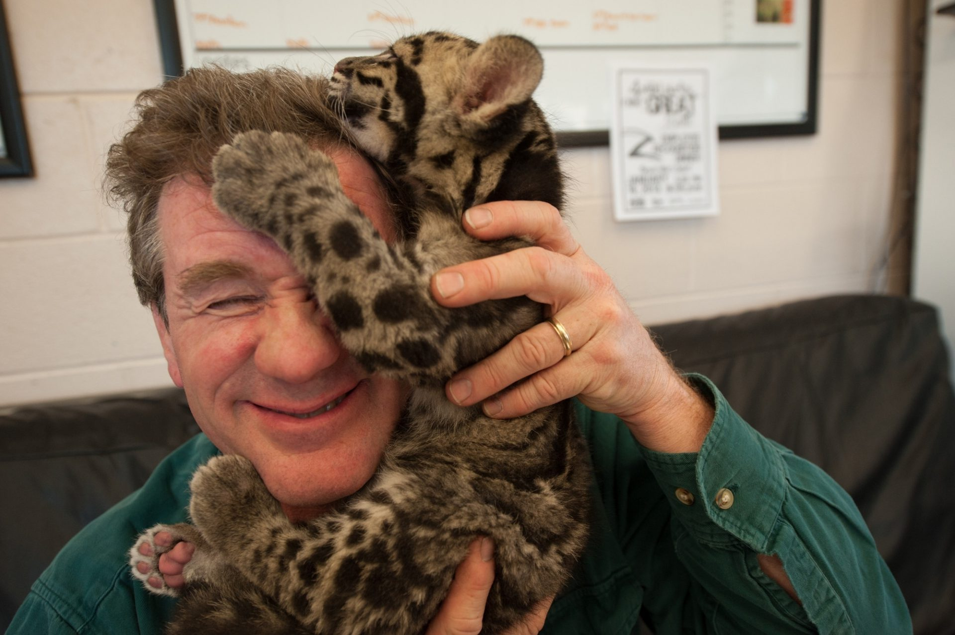 Photo: Nine-week-old clouded leopard cub with Joel Sartore.