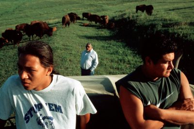 Photo: Louis LaRose and youth from the Winnebago tribe with the tribal bison herd near Winnebago, Nebraska.