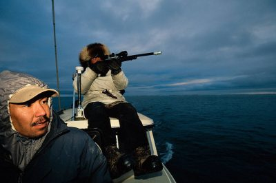 Photo: Eskimo hunters take shots at ringed seals off the coast of Barrow.