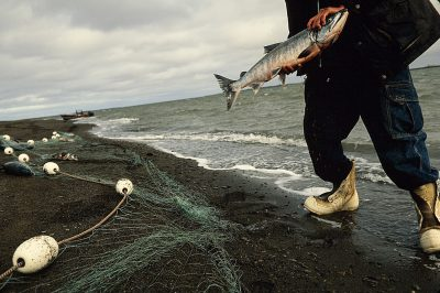 Photo: Fishing for salmon near Point Lay, Alaska.
