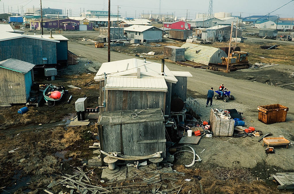 Photo: Whale parts, the remains of a successful hunt, lay around the native village of Kaktovik on Alaska's North Slope.