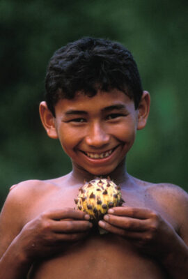 Photo: A young man holds a Beriba fruit cultivated in the Brazilian Amazon.