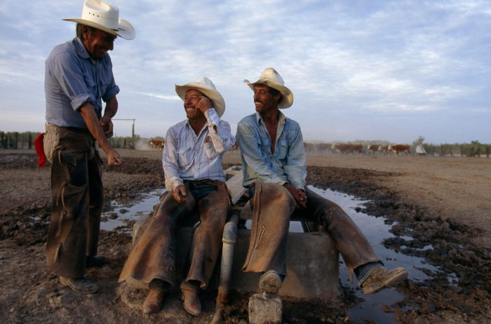 Photo: Ranch hands relax and joke after a day of working cattle on the 130,000-acre Callaghan ranch near Encinal, Texas.