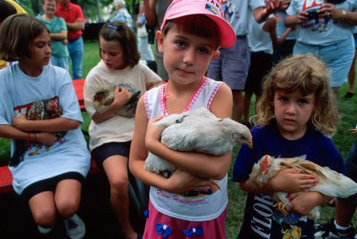 Photo: The chicken show at Wayne, NE's Chicken Days festival.