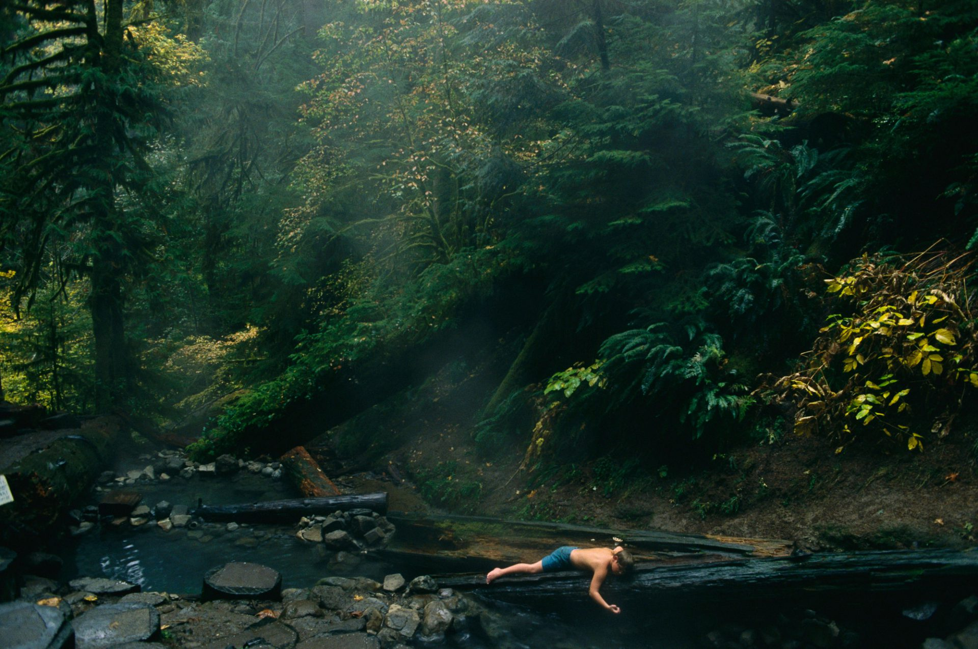 Photo: A young boy plays in a stream in Willamette National Forest, Oregon.