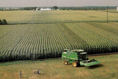 Photo: An Iowa corn farm.