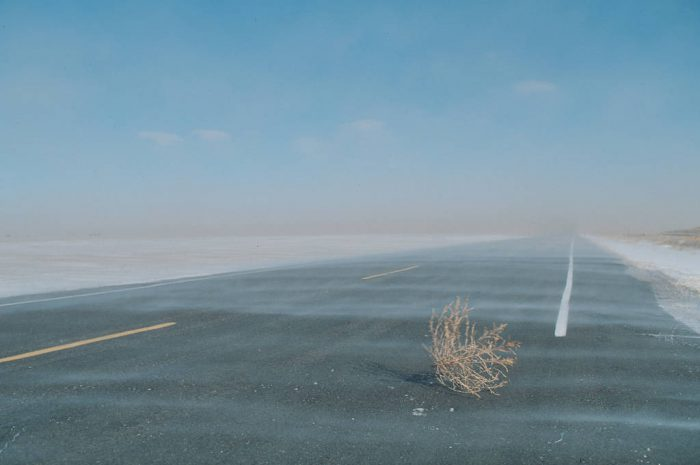 Photo: A tumbleweed blows across the road in the ranchland of Eastern Colorado.