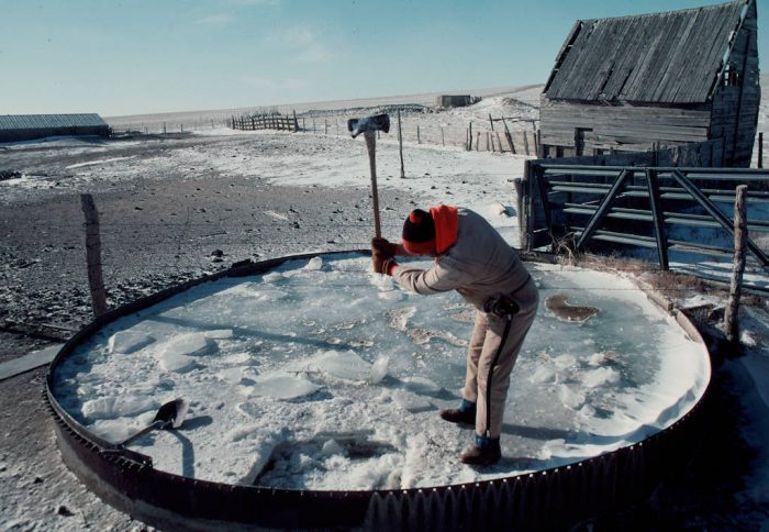 Photo: Braving temperatures of -20 F and windchills down to -60, Jesus Alanis, a worker at the C.B. Bledsoe Ranch in Colorado, chops a hole in the ice covering a cattle tank.