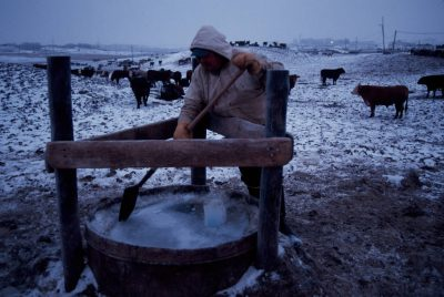 Photo: John Engelhaup breaks ice from a cattle tank in sub-freezing weather at a feedlot near Springfield, Nebraska.