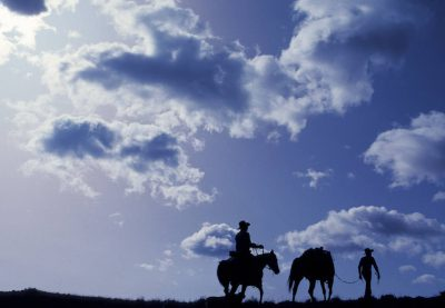 Photo: Cowboys and horses silhouetted against the sky near Salmon, Idaho.