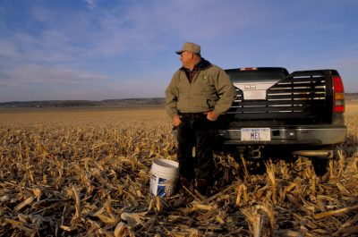 Photo: Melvin Johnston of Smithfield, Iowa in a high-yield corn field.