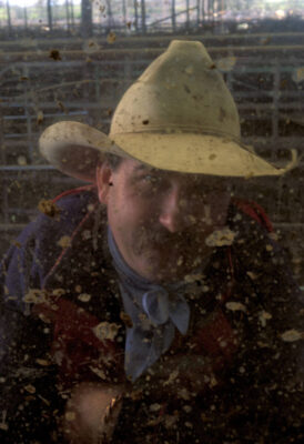 Photo: Bobby Edwards, a yard-working cowboy, looks through a muddy window at the Shasta Livestock Auction in Cottonwood, California.