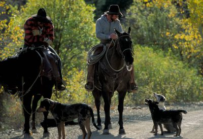 Photo: Ranchers with their dogs near Leadore, Idaho.