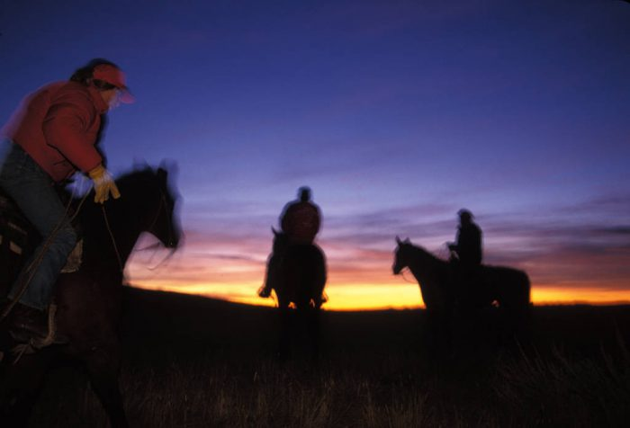 Photo: Ranching on the upper Missouri River near the Charles M. Russell NWR in Montana