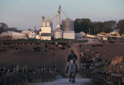 Photo: A rancher rides his horse through a feedlot in Springfield, Nebraska.