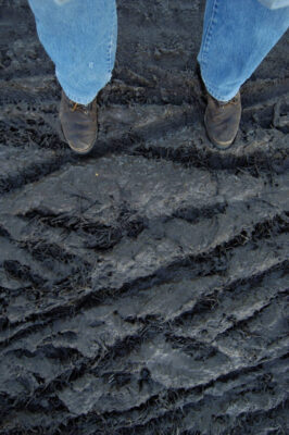 Photo: Tire tracks in the mud at a pumpkin farm near Roca, NE.