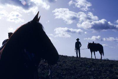 Photo: Scenic from an Idaho ranch.