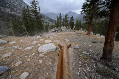 Photo: A horse ride through the trails of Kings Canyon National Park in the Sixty Lake Basin, California.